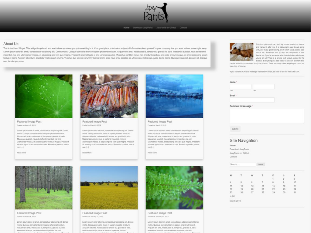 JaxyPants WordPress Theme